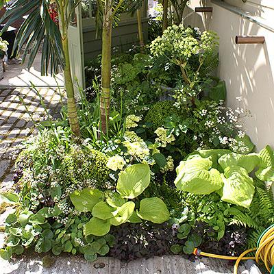 Verktyg, redskap och tillbehör för trädgårdsskötsel och odling