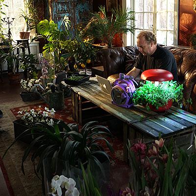 System och växthus för odling inomhus