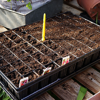 Blomfat, plantbrickor och brätten