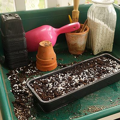 Planteringsbord för omplantering av växter
