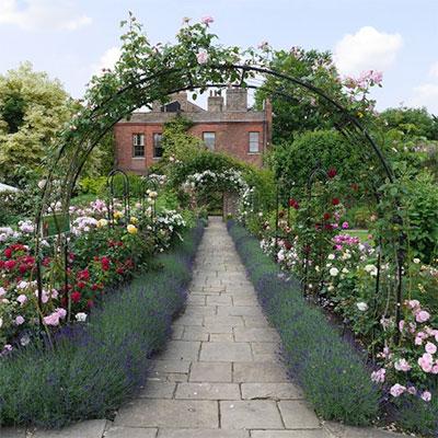 Rosenbågar och växtportaler till trädgården