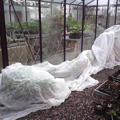Skuggning och skydd av odlingar och växter