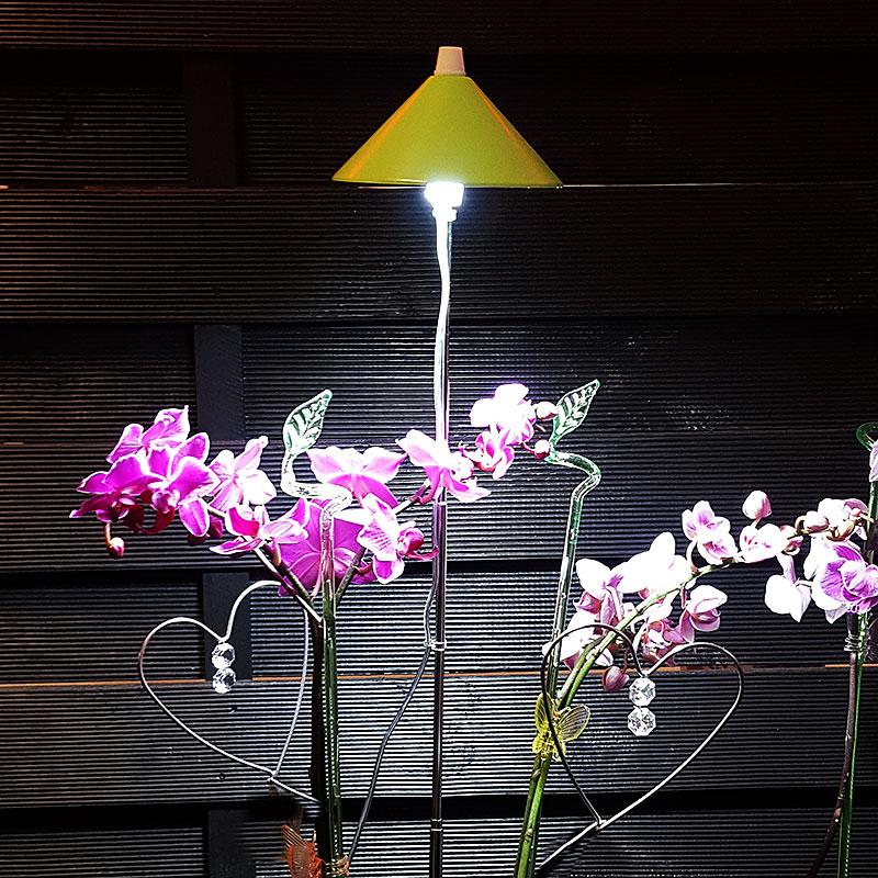 Växtlampor med LED-dioder för växtodling